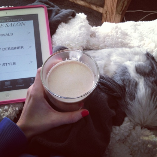 my day started with a delicious cup of coffee & snuggling Ziggy while I shopped for shoes on my iPad.